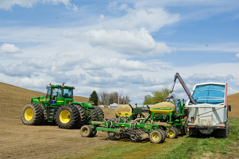 Loading garbanzo beans into an air seeder during spring planting