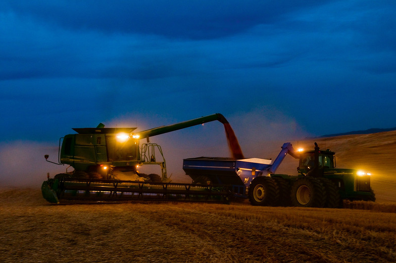 A combine unloads its load of grain on the go into a tractor pulled grain cart in the early hours of evening in the Palouse region of Washington