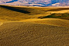 Mature wheat on the hills of the Palouse region of Washington at sunset