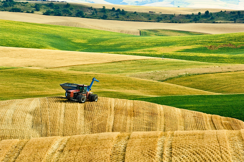 A tractor pulling a grain cart waits atop a hill in the Palouse region of Washington for a combine needing to unload
