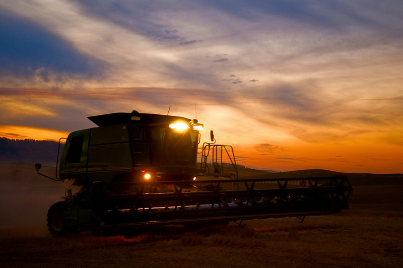 A combine moves across an area of stubble to an area in need of harvest at sunset in the Palouse region of Washington