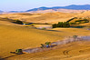 A team of combines harvest wheat in the Palouse region of Washington