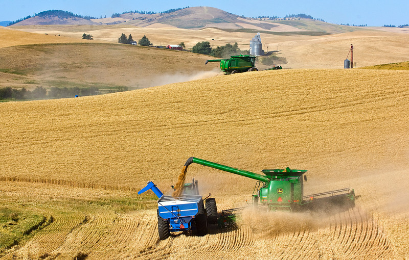 A combines harvests wheat in the Palouse region of Washington while unloading into a grain cart on the go