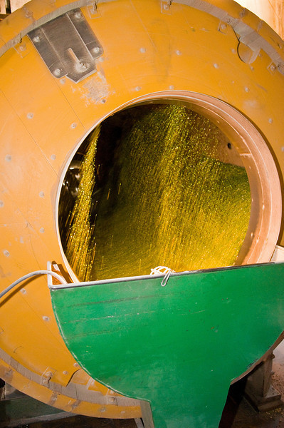 Machine used in the processing of dry peas in action with peas visible in an elevator in the Palouse region of Washington