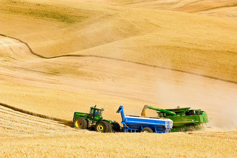 A combine harvests wheat in the Palouse region of Washington while unloading on the go into a grain cart