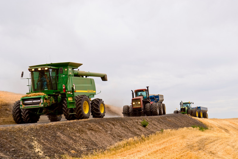 Combines with headers removed travel down the road to move to another field in the Palouse region of Washington.