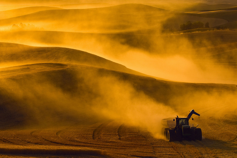 A tractor pulling a grain travels across a field in very dusty conditions at sunset in the Palouse region of Washington
