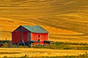 Barn in the Palouse hills