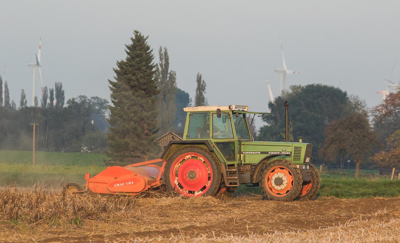Fendt Farmer311LSA Turbomatik with haulm topper Amac LK4 in Titz.