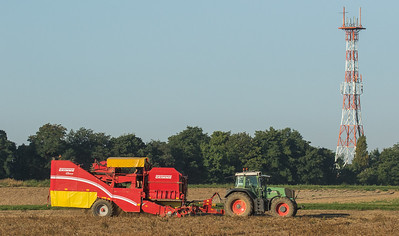 Fendt 930 Vario with potato harvester SE150-60.