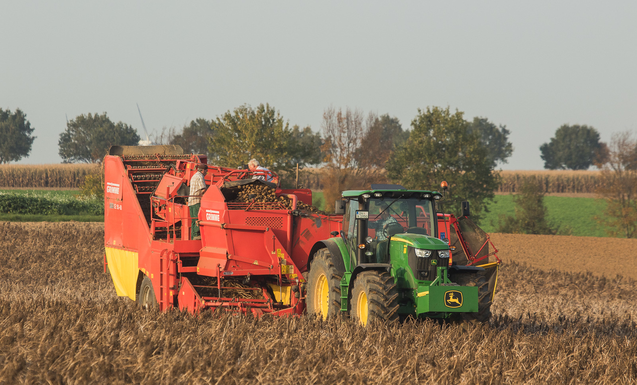 John Deere 6170R with Grimme SE 150-60 harvesting potatoes in Ralshoven.