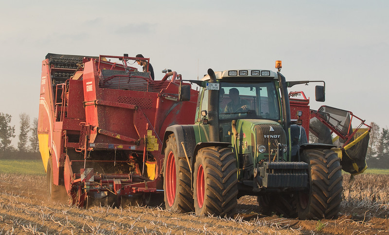 Fendt 718 Vario with potato harvester Grimme SE150-60 in Titz.