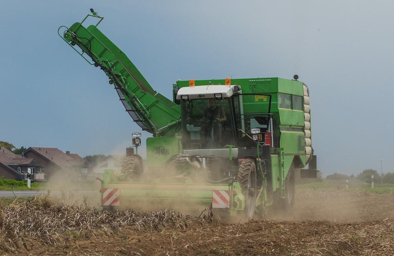 AVR Puma+ harvesting potatoes in Lindern.