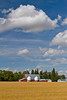 A grain farm, red barn and storage bins with a ripe wheat field near Swan Lake, Manitoba, Canada.