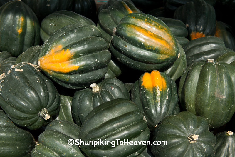 Acorn Squash, West Ridge Orchard, Crawford County, Wisconsin