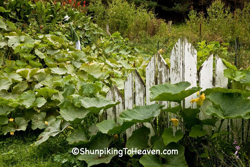 Farm Garden, Trempealeau County, Wisconsin