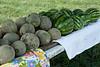 Roadside Melon & Honey Stand, Dane County, Wisconsin
