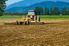 Seedbed preparation prior to planting potatoes in Skagit County, WA