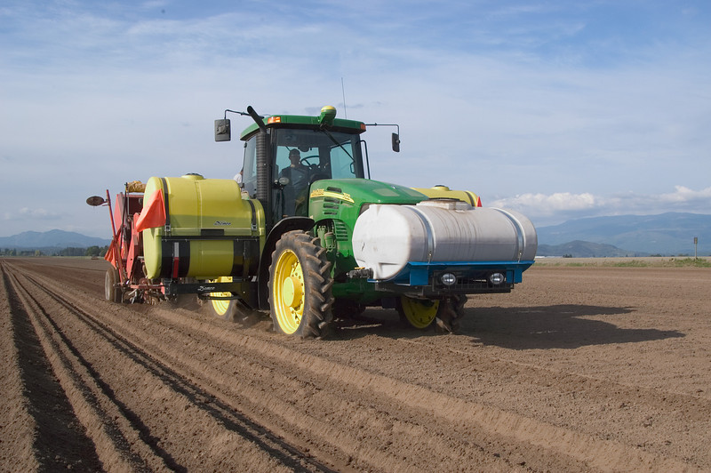 Planting potatoes in Skagit County, WA