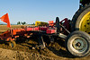 Cultivating recently planted rows of potatoes in Skagit County, WA