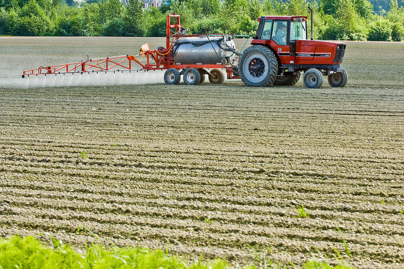 Spraying recently planted crops