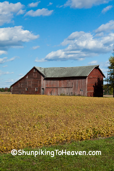 Barn and Soybean Field, Sauk County, Wisconsin