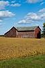 Barn and Soybean Field, Sauk County, Wisconsin