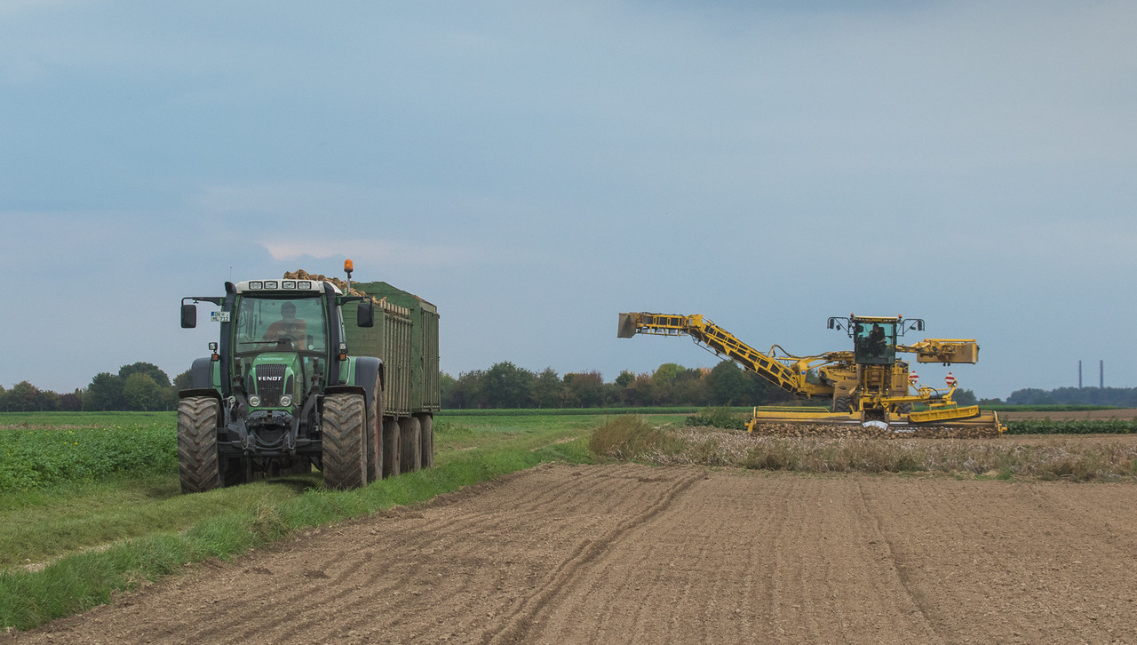 Fendt 712 Vario and Ropa Euromaus 4 loading sugarbeets in Lindern.