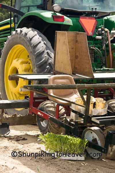 Tractor with Tobacco Setter, Wayne County, North Carolina