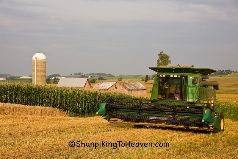 Wheat Harvest, Dane County, Wisconsin