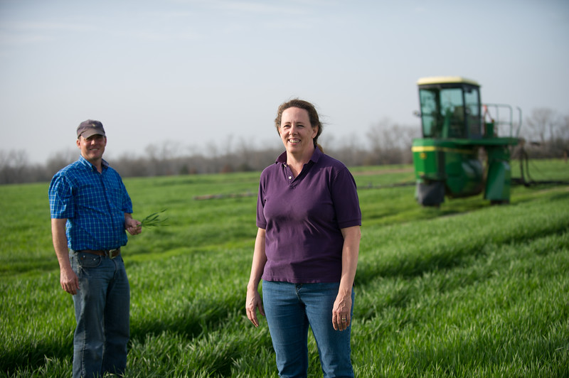 12019-Agriculture-farm-8534