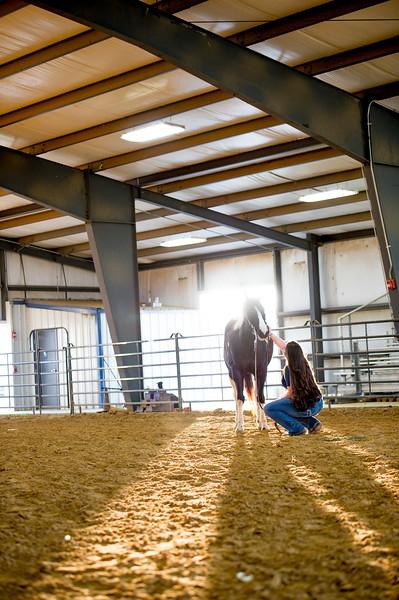 16348-event-Equestrian Team -8306