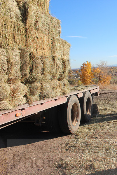 Hay on Truck