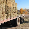 Hay on Truck