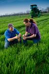 12019-Agriculture-farm-8615
