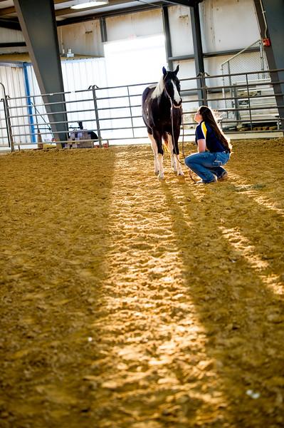 16348-event-Equestrian Team -8285