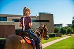 M19210- Horses on Campus-3169