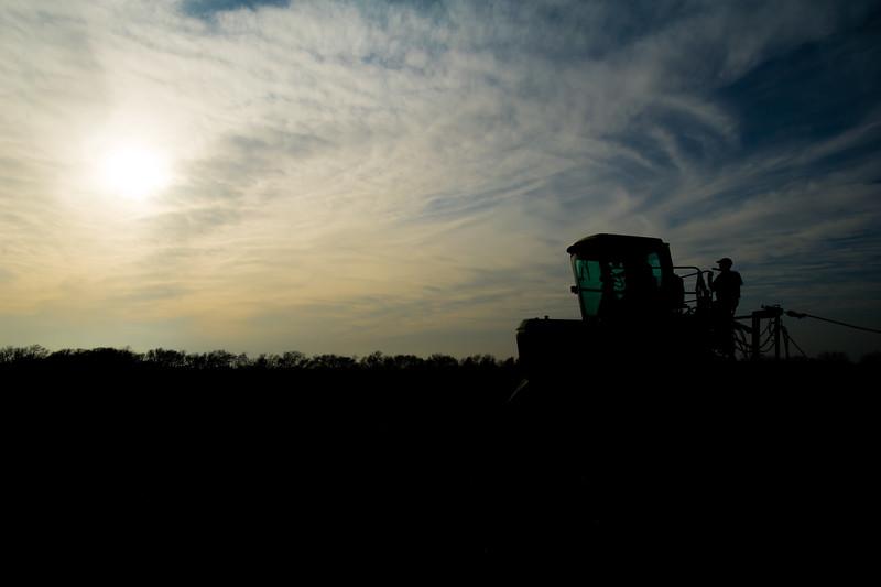12019-Agriculture-farm-8709