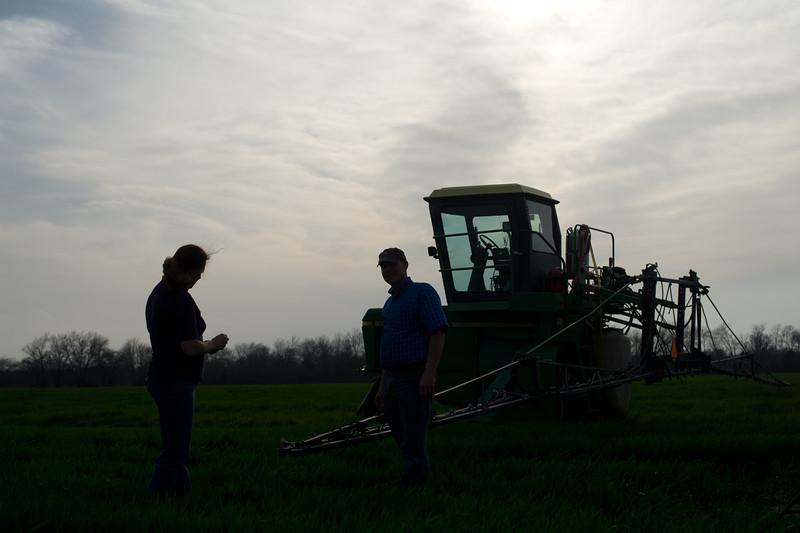 12019-Agriculture-farm-8685