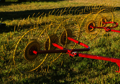 Hay rake, Williston, North Dakota, 1996