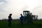 12019-Agriculture-farm-8683