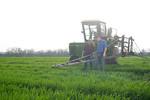 12019-Agriculture-farm-8660