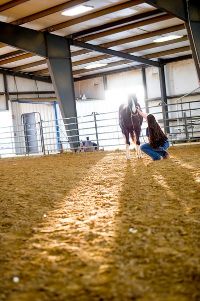 16348-event-Equestrian Team -8303