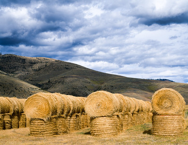 Hay, Lake County, Montana, 1996