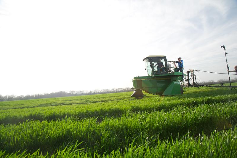 12019-Agriculture-farm-8723