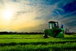 12019-Agriculture-farm--2