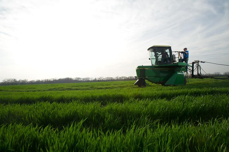 12019-Agriculture-farm-8736