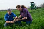 12019-Agriculture-farm-8610