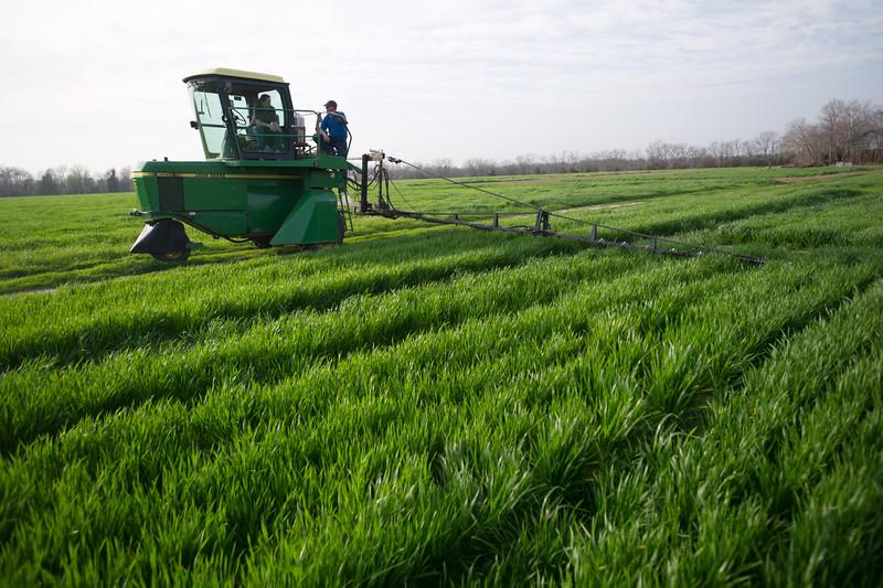 12019-Agriculture-farm-8748