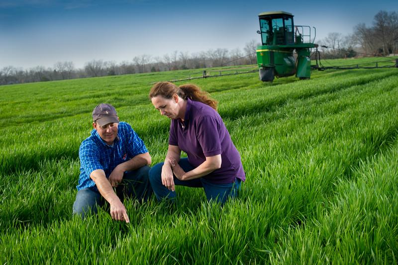 12019-Agriculture-farm-8627